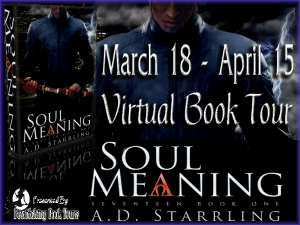 Soul Meaning Button 300 x 225